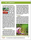 0000074635 Word Template - Page 3