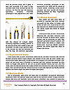 0000074636 Word Templates - Page 4