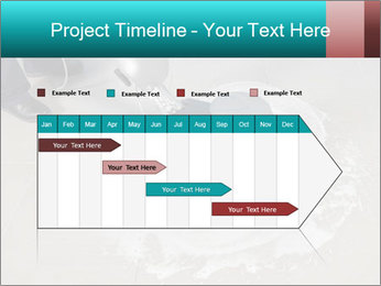 0000074643 PowerPoint Template - Slide 25