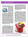 0000074650 Word Template - Page 3