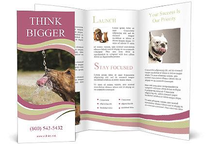 0000074651 Brochure Template
