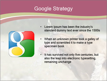 0000074651 PowerPoint Template - Slide 10