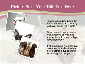 0000074651 PowerPoint Template - Slide 17