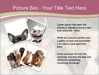 0000074651 PowerPoint Templates - Slide 23