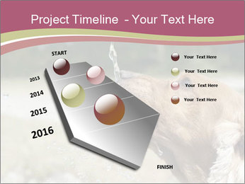 0000074651 PowerPoint Template - Slide 26