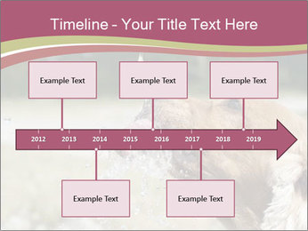 0000074651 PowerPoint Template - Slide 28