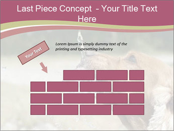 0000074651 PowerPoint Template - Slide 46