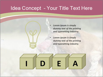 0000074651 PowerPoint Template - Slide 80