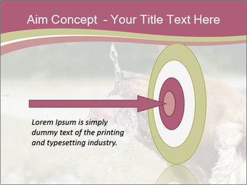0000074651 PowerPoint Template - Slide 83
