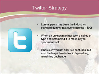 0000074651 PowerPoint Template - Slide 9