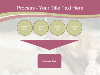 0000074651 PowerPoint Template - Slide 93