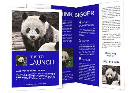 0000074658 Brochure Template