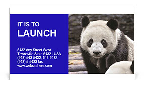 0000074658 Business Card Templates