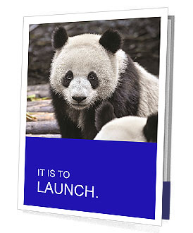 0000074658 Presentation Folder