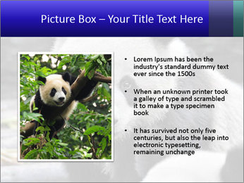 0000074658 PowerPoint Templates - Slide 13