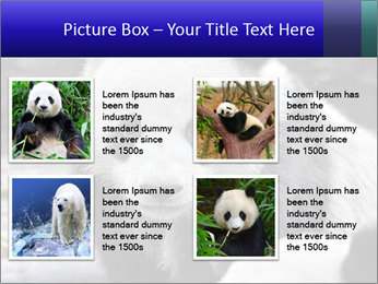 0000074658 PowerPoint Templates - Slide 14