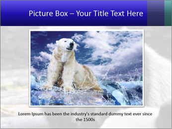 0000074658 PowerPoint Templates - Slide 15
