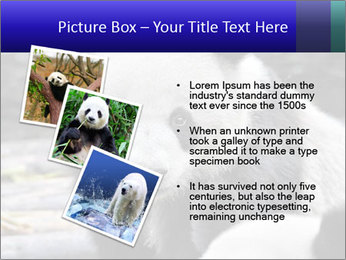 0000074658 PowerPoint Templates - Slide 17