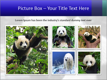 0000074658 PowerPoint Templates - Slide 19