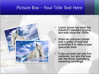 0000074658 PowerPoint Templates - Slide 20