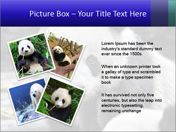 0000074658 PowerPoint Templates - Slide 23
