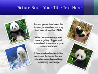 0000074658 PowerPoint Templates - Slide 24