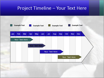 0000074658 PowerPoint Templates - Slide 25