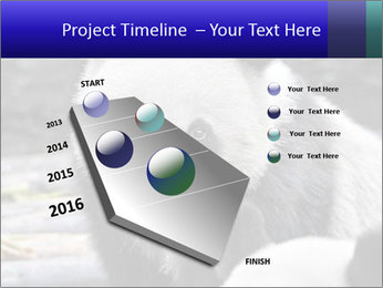 0000074658 PowerPoint Templates - Slide 26