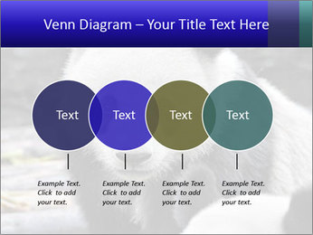0000074658 PowerPoint Templates - Slide 32