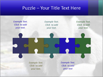 0000074658 PowerPoint Templates - Slide 41