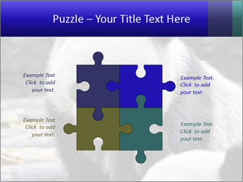 0000074658 PowerPoint Templates - Slide 43