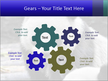 0000074658 PowerPoint Templates - Slide 47