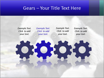 0000074658 PowerPoint Templates - Slide 48