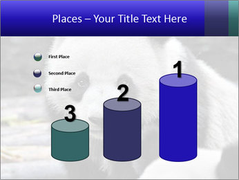 0000074658 PowerPoint Templates - Slide 65