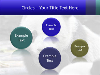0000074658 PowerPoint Templates - Slide 77