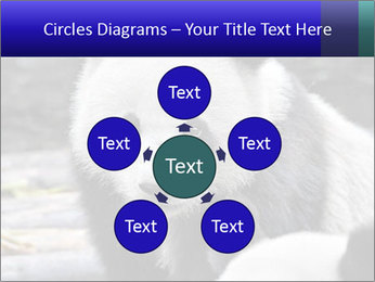 0000074658 PowerPoint Templates - Slide 78
