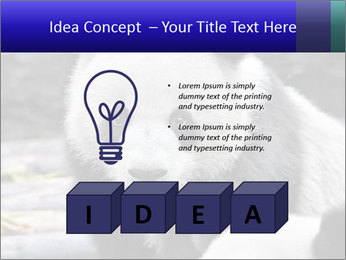 0000074658 PowerPoint Templates - Slide 80