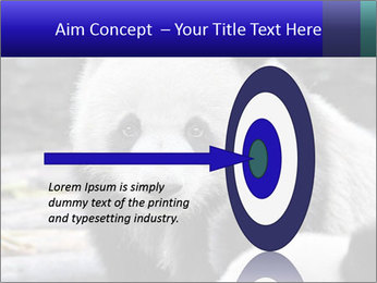 0000074658 PowerPoint Templates - Slide 83