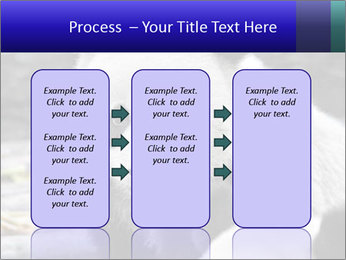 0000074658 PowerPoint Templates - Slide 86