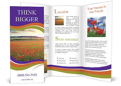 0000074659 Brochure Template