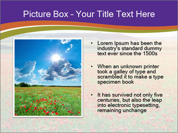 0000074659 PowerPoint Template - Slide 13