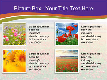 0000074659 PowerPoint Template - Slide 14