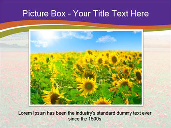 0000074659 PowerPoint Template - Slide 15