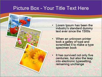 0000074659 PowerPoint Template - Slide 17