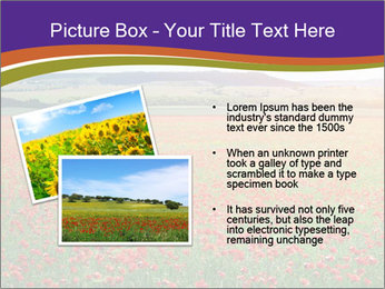 0000074659 PowerPoint Template - Slide 20