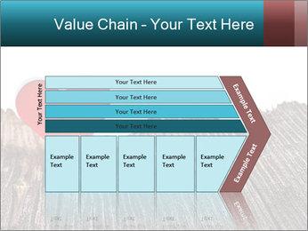 0000074660 PowerPoint Templates - Slide 27