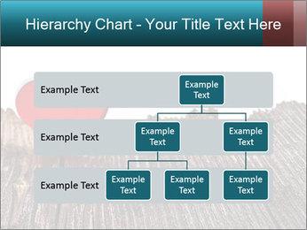 0000074660 PowerPoint Templates - Slide 67