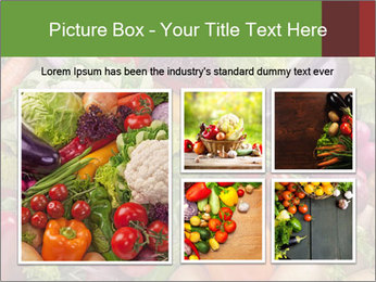 0000074662 PowerPoint Template - Slide 19