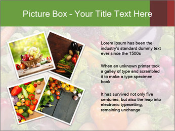 0000074662 PowerPoint Template - Slide 23