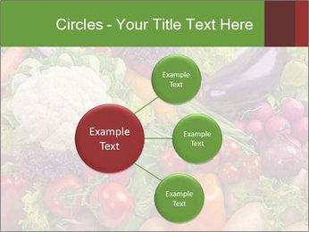 0000074662 PowerPoint Template - Slide 79
